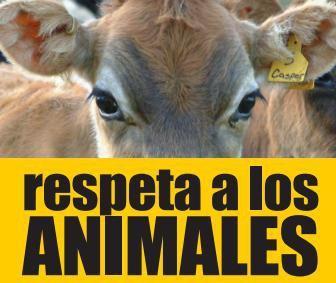 respeto - Marianela Garcet
