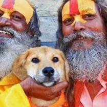 Rupee-primer-perro-Everest-petstars.com.ar