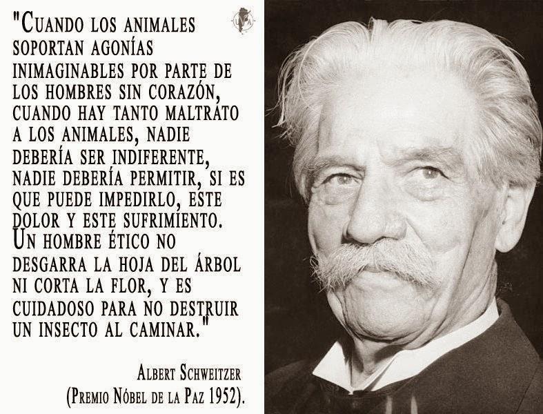 https://defensanimales.files.wordpress.com/2014/04/9bc02-www-marianelagarcet-com1827_1597343475_n.jpg